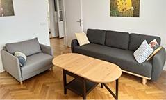 Apartman Dorcol dnevna soba